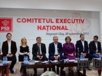 dragnea negresti oas comitet executiv psd (75)