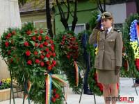 ziua armatei satu mare 2015 (109)