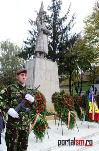 ziua armatei satu mare 2015 (111)