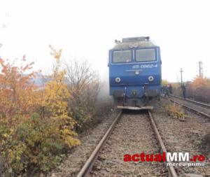 tren1-443x375