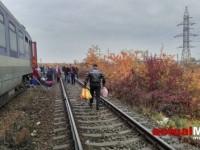 tren6-500x280