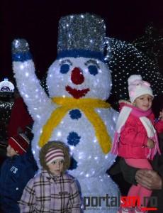 Iluminat de iarna, Satu Mare 2015 (11)