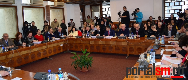 Consiliul Judetean, ianuarie 2016 (39)
