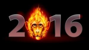 Maimuta-Foc