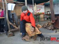 concurs taiat porci udmr satu mare (77)