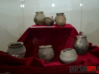 expozitie Avarii si gepizii (1)