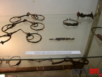 expozitie Avarii si gepizii (12)