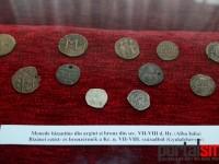 expozitie Avarii si gepizii (22)