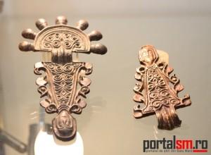 expozitie Avarii si gepizii (5)