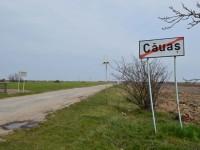 Căuas - Ady Endre3