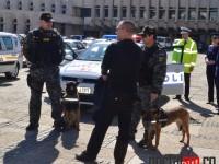 Ziua Politiei, Satu Mare 2016 (44)