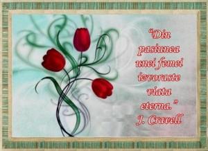 felicitare-ziua-femeii