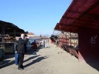 reparatii tarabe Piata de Vechituri (5)