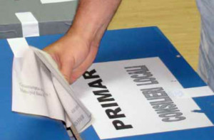alegeri locale satu mare