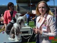 Internațional Dog Show: Câini din 18 țări și căpușe autohtone (FOTO&VIDEO)