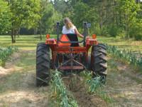 Femeie fără permis, la volanul unui tractor