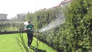 fitosanitar
