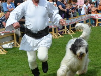 international dog show satu mare (103)