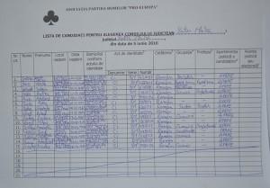 lista partida romilor alegeri