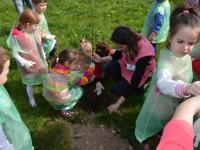 plantare gradinita 14 mai5