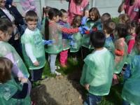 plantare gradinita 14 mai6