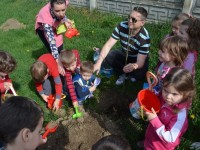 plantare gradinita 14 mai8