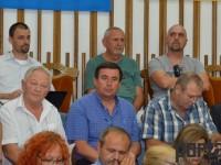 Consiliul Local Satu Mare3