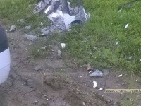 accident paulesti1