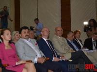 constituire consiliul local satu mare (12)