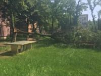 copac m17
