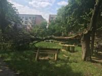 copac m172