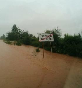 inundatii homoroade (2)