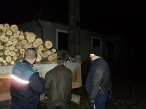 Se fura lemne ca-n codru. Hoți surprinși de polițiști