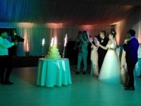 nunta7