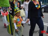 parada florilor satu mare (19)