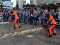 concurs taiat lemne satu mare2