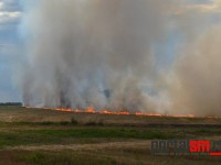 incendiu ardud (11)