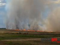 incendiu ardud (2)