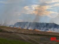 incendiu ardud (6)