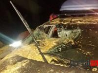 accident caruta satu mare odoreu (12)