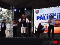 fest-palincii-satu-mare1