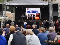 fest-palincii-satu-mare4