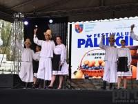 fest-palincii-satu-mare5