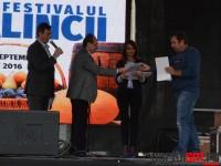 festivalul-palincii-satu-mare7