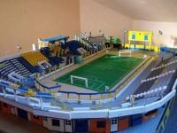 Stadionul Olimpia, refăcut de un copil de 14 ani (FOTO)