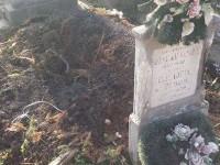 cimitir1