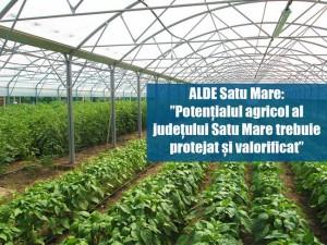 alde-sprijin-producator