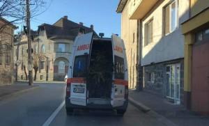 Vinovatul de transportul bradului cu ambulanța, sancționat. Ce pedeapsă a primit