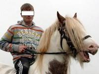 Tânăr cercetat de polițiști după ce a furat un cal