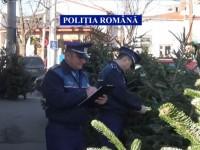 Polițiștii au demarat acțiunea Pomul de Crăciun. Amenzi usturătoare